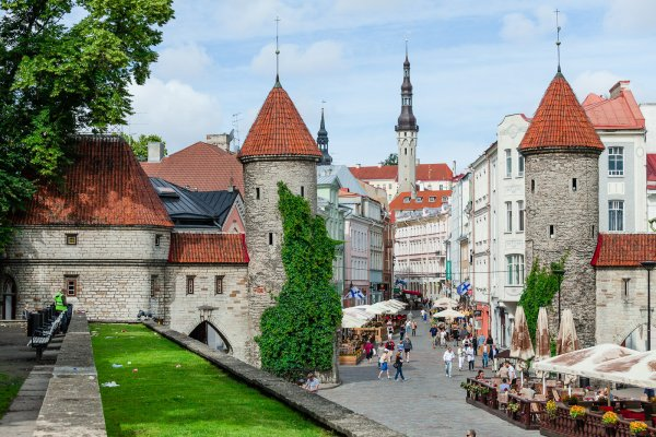 Власти Эстонии выделят 320 миллионов евро на обустройство границы с Россией