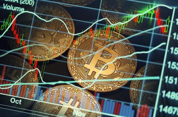 Холдинги формируют бюджеты для пампа криптовалюты Tkeycoin