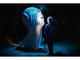 IntiLED вновь поддержал международный фестиваль светового искусства «Ночь света в Гатчине»