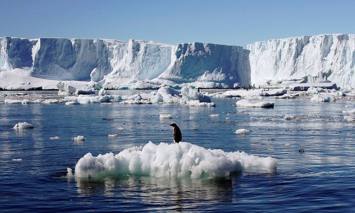 Большинство желающих участвовать в антарктической экспедиции — сисадмины