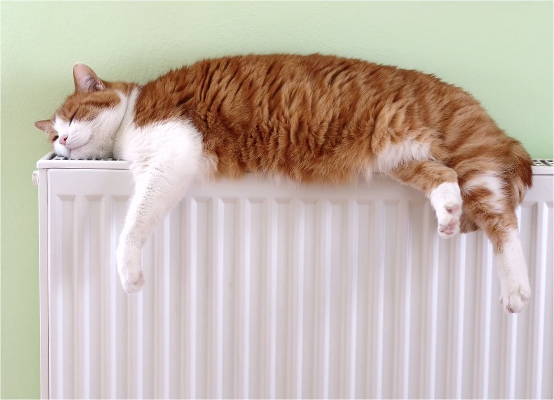 Тепломодернизация домов снижает платежи за отопление в два-три раза