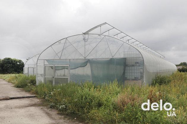 Родинний добробут: сеть кооперативных мини-ферм может стать драйвером развития регионов
