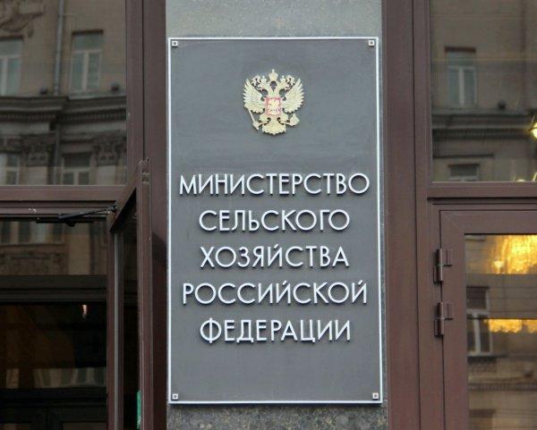 Россия и Беларусь договорились о запрете ввоза санкционных продуктов