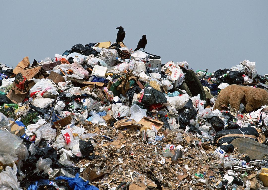 Китайцы планируют построить в Украине 10 мусороперерабатывающих заводов