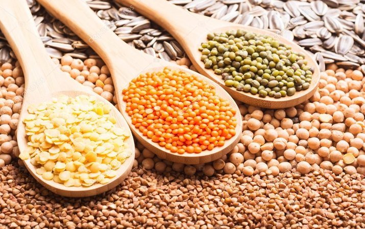 В Украине рекордный урожай зерновых — уже собрали более 66 млн тонн