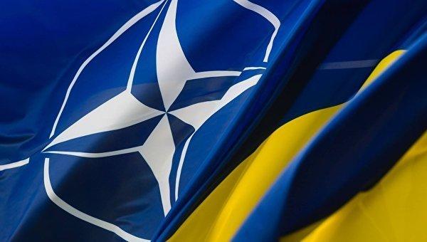 В НАТО определили основные направления для реформ сектора безопасности и обороны