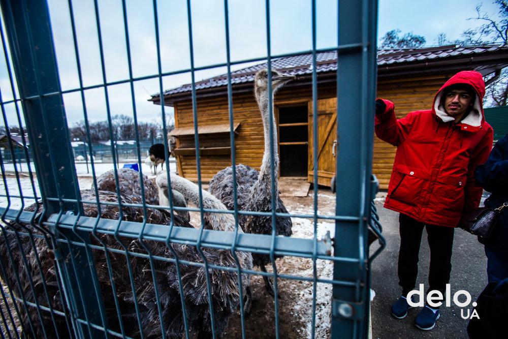Пять лет спустя. Как живет бывшая резиденция Януковича сегодня