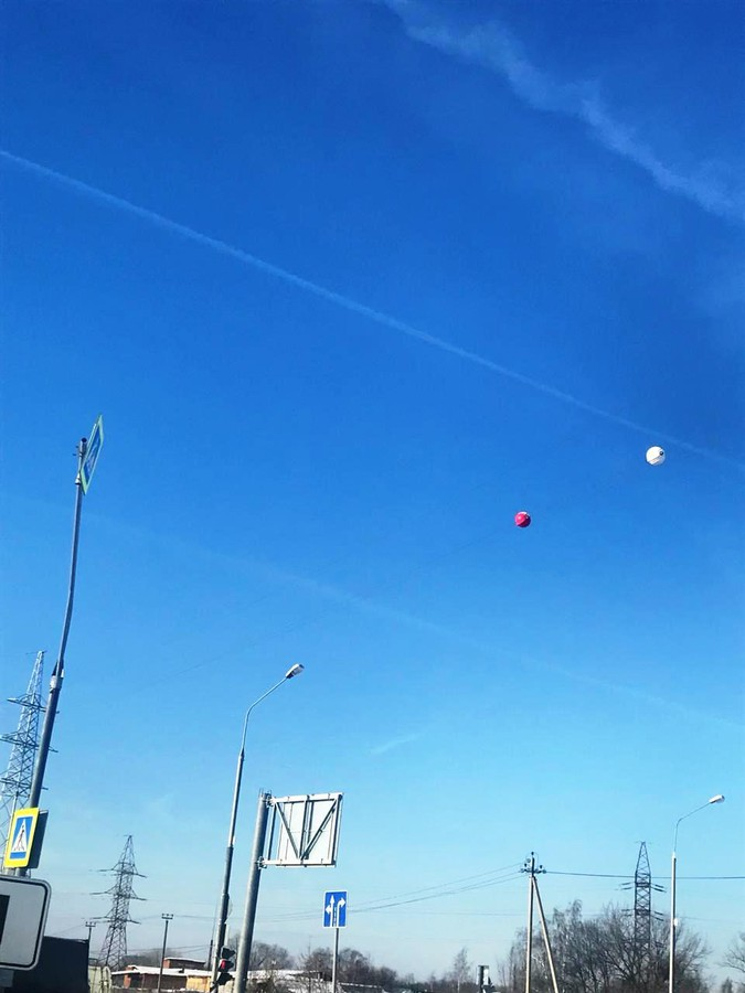 Сигнальные шары-маркеры начала устанавливать «МОЭСК» на линиях электропередачи в ТиНАО