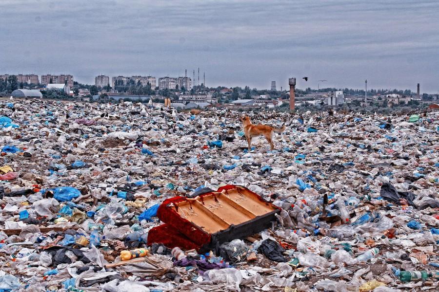Бесполезный мусор принесёт пользу Подмосковью